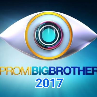 --Dein Favorit bei Promi Big Brother 2017--