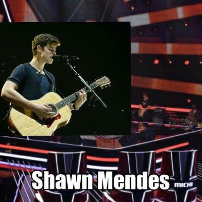 Opinionstar's The Voice of Germany 2018 // Blind Auditions - Shawn Mendes